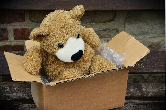 medvídek v krabici